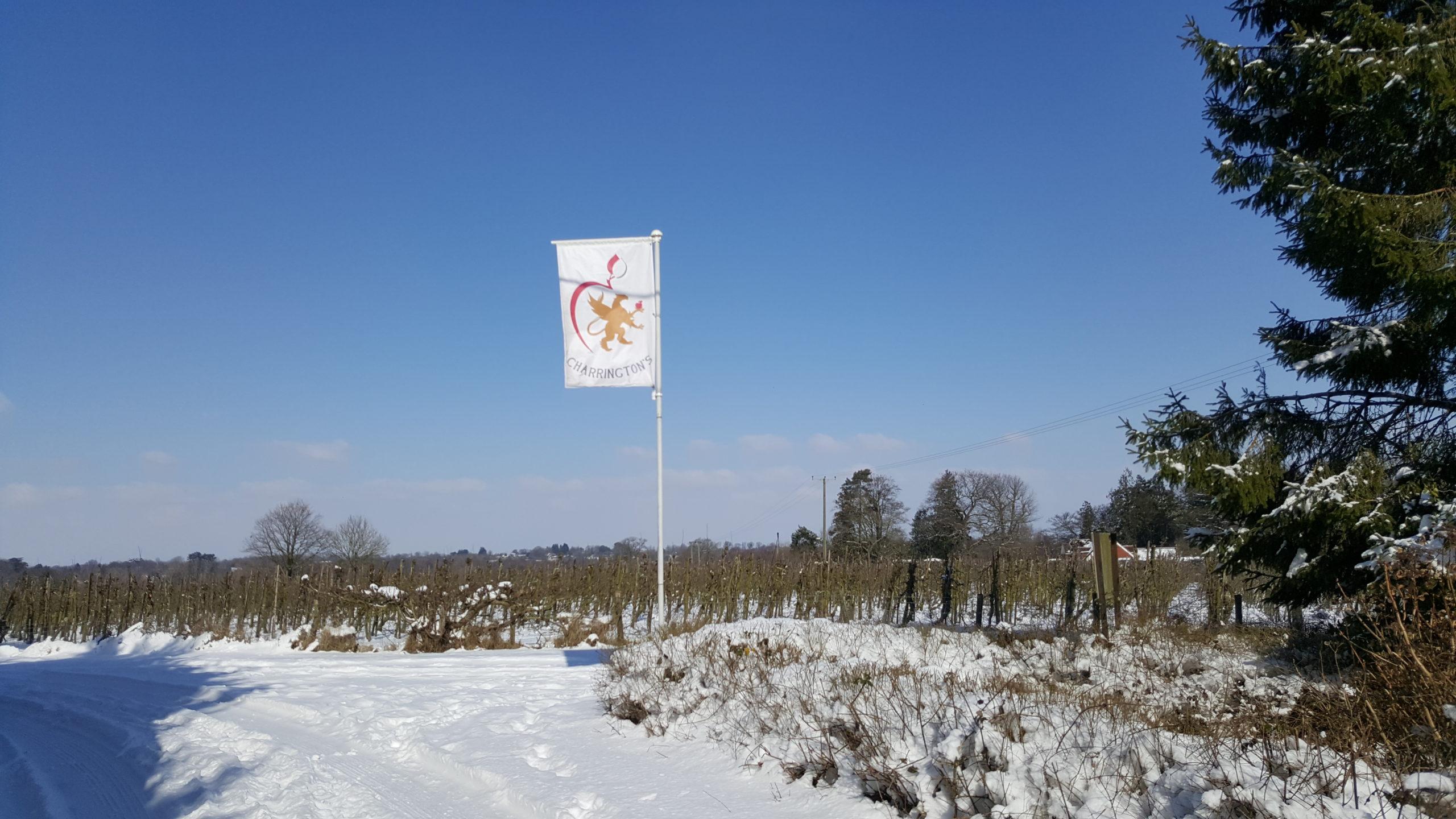Charrington's flag in snow
